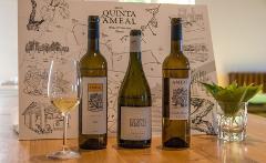 Prova de Vinho Loureiro - Quinta do Ameal